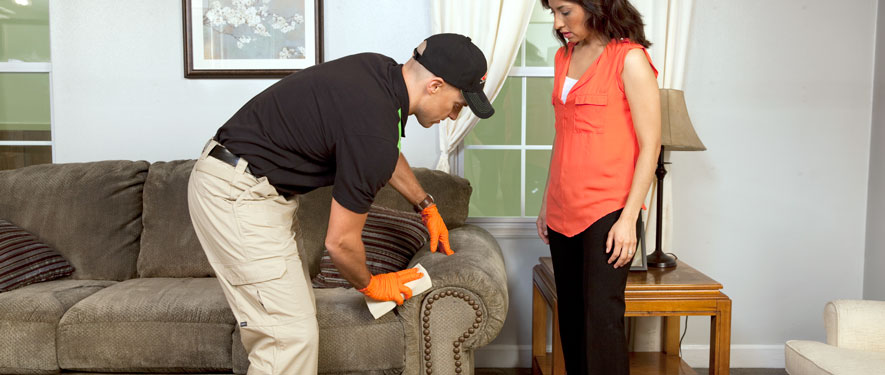 London, ON carpet upholstery cleaning
